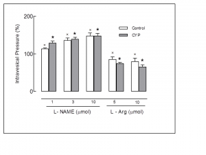 Graphic evaluation of normal female rats and rats with cystitis indu- ced by CYP (150 mg/kg, i.p.) The effect of the drugs is expressed by mean ± SEM (%) in rats which underwent the L-NAME and L-ARG administration via i.c.v., at 25-30 min intervals, at maximum intra- vesical pressure. All animals were disposed on the special table in bipedal position. in bipedal position. Values correspond to the ma- ximum intravesical pressure at the moment when there was loss via urethra of saline infused slowly in the bladder (leak point pressure) . The X (open bar) and asterisk (filled bar) indicate P<0.05.